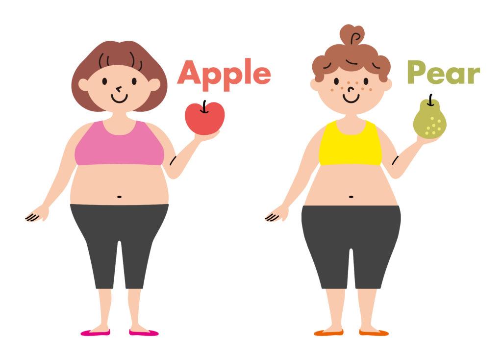 肥満のタイプ