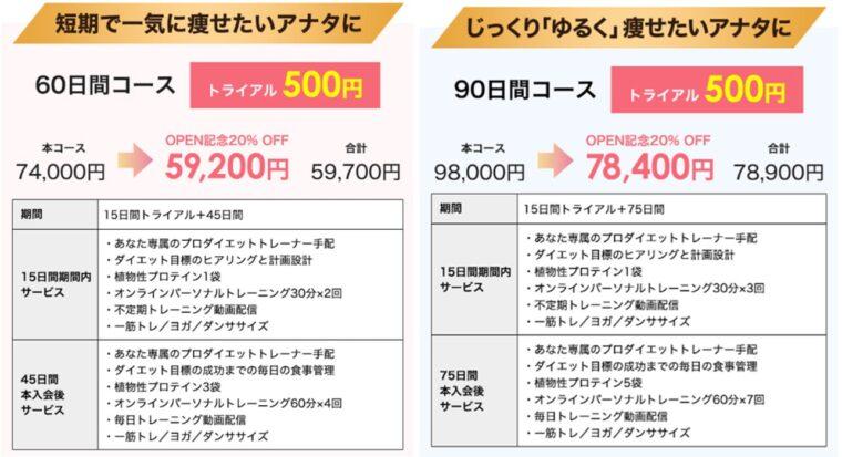 フィジコオンライン料金表